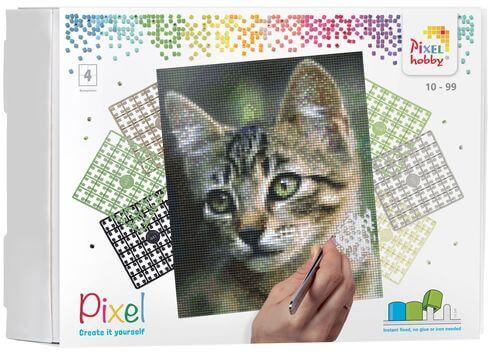 90034_Kitten_4BP_EN