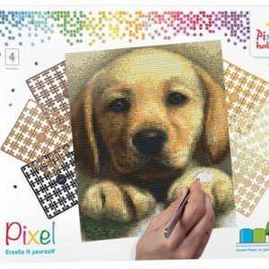 90045_Golden-retriever-puppy_4BP_EN