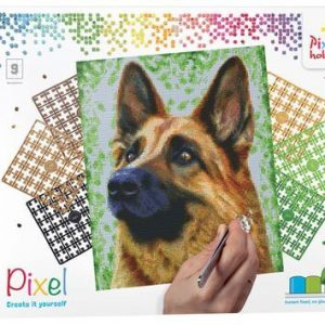 90049_Shepherd-dog_9BP_EN